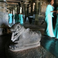 Students pass by Nandi Bull facing Shiva murti inside Hoysaleshwara Temple, Belur, Karnataka.