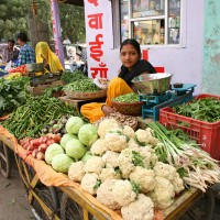 A majority of Hindus (more than 80% of India's population) are vegetarians. Vegetable vendors are a common sight in all cities, towns and villages. In the morning, they deliver vegetables on carts to the homes of their regular clients before they settle in their spots in the vegetable markets for the day.